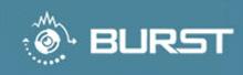 Burst Video
